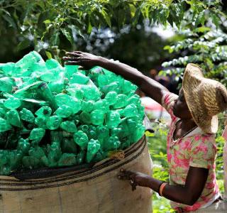 Desenvolvimento de práticas sustentáveis